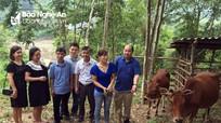 Nhiều hoạt động hỗ trợ người nghèo tại Nghệ An ngày 18/9