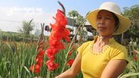 Hoa chưa bán đã tàn, nhiều nhà vườn quê Bác lo lắng thất thu