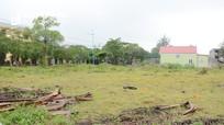 Nghệ An chấm dứt hoạt động 138 dự án, thu hồi 34.500 ha đất