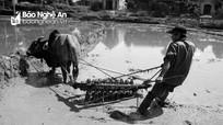 Người dân bản Chà Nằn, xã Chi Khê (Con Cuông) dùng guồng làm ruộng bậc thang