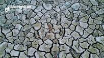 200 hồ đập Nghệ An cạn trơ đáy sau 1 tháng nắng nóng kịch điểm
