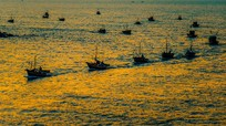 Khung cảnh đẹp khó tin ở biển Quỳnh trong thời khắc bình minh