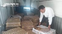 Bắt vụ vận chuyển 5.400 con gia cầm không rõ nguồn gốc