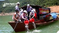 Thả 1 tấn cá xuống lòng hồ thủy điện lớn nhất Bắc miền Trung