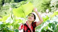 Đến với đầm sen đẹp hút hồn ở bản rẻo cao của Nghệ An