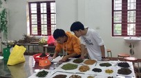Cậu bé người Thái với ý tưởng khôi phục nghề chế biến men lá từ cây rừng