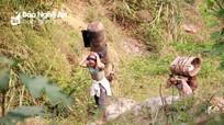 Những phụ nữ băng rừng mót phế liệu trên đỉnh Pù Phen