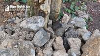 Rác, đất đá thải 'tấn công' cảnh quan rừng săng lẻ Tương Dương