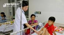 Nghệ An: Một học sinh tiểu học bị rắn cắn tại trường