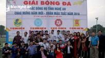 FC họ Đinh vô địch Giải bóng đá các dòng họ Nghệ An năm 2018