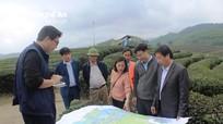 Bức ảnh chụp Đoàn JICA tại Đảo Chè ở Nghệ An đạt giải ảnh hữu nghị Việt - Nhật