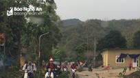 Nghệ An: Mưa đá làm cây cối, hoa màu bị gãy đổ