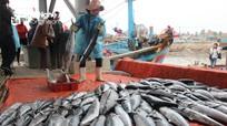 300 chủ phương tiện tàu cá được tập huấn về bảo vệ chủ quyền biển, đảo