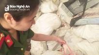 Nghệ An: Bắt gần 5 tấn thực phẩm bẩn không có nguồn gốc xuất xứ