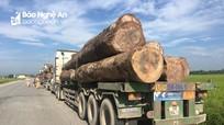 Tạm giữ 3 xe chở gỗ quá khổ trên Quốc lộ 7
