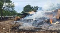Xưởng gỗ bóc tại Thanh Chương bất ngờ bốc cháy giữa trưa