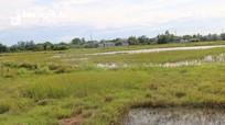 'Tắc' nước thải ở vùng tái định cư dự án Cầu Đen