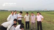 Đất được giao không đúng thẩm quyền từ sau ngày 1/7/2014 sẽ không được cấp Giấy chứng nhận