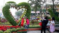 Cuốn hút những đường hoa rực rỡ đón Tết ở thành Vinh