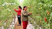 Ông Hồ Xuân Hùng: Đồng hành mạnh hơn với nông nghiệp, nông thôn mới