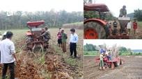 Công ty CP Mía đường Sông Con: Đồng hành cùng người trồng mía trong giai đoạn khó