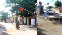 Nhiều địa phương ở Nghệ An vẫn chủ quan trong phòng chống dịch tả lợn châu Phi