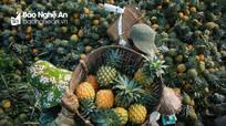 Nghệ An sẽ có thêm Nhà máy chế biến hoa quả hiện đại