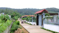 Xã Quỳnh Trang (TX. Hoàng Mai) huy động 459,8 tỷ đồng xây dựng nông thôn mới