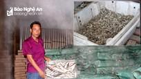 Trung Quốc siết chặt nhập khẩu, hàng nông lâm, thủy sản Nghệ An gặp khó