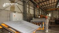 Công ty TNHH Toàn Thắng: Gắn sản xuất với bảo vệ môi trường