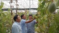Tân Thành - điểm sáng phát triển của huyện Yên Thành