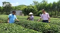 Nghệ An: Tiếp thêm nguồn lực từ chương trình nâng hạn mức cho vay