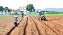 Nghệ An chuyển biến mạnh mẽ từ xây dựng nông thôn mới trong năm 2020