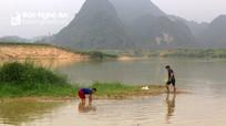 Cá, tôm chết hàng loạt một cách bất thường trên sông Con ở Nghệ An