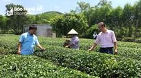 Nghệ An: Tín dụng chính sách tăng trưởng an toàn, hiệu quả