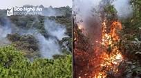 Cháy 10 ha rừng thông ở thị xã Hoàng Mai