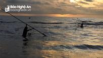 Ngư dân Nghệ An dầm sóng 'săn' hàng tấn ruốc biển mỗi ngày
