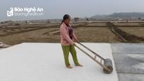 Vào vụ sản xuất muối xuất khẩu