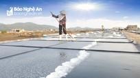 'Vựa muối' ở Nghệ An tăng năng suất