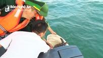Cửa Lò thả rùa quý hiếm về biển