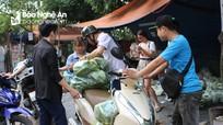 'Trái tim xứ Nghệ' tại Hà Nội 'giải cứu' dưa chuột cho nông dân Nghệ An
