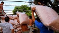 Nghệ An tìm hướng đi cho nông sản trong mùa dịch