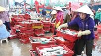 Ngư dân Nghệ An trúng đậm cá đốm