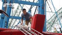 Sau bão, ngư dân Nghệ An thu nhập khá từ đánh bắt hải sản