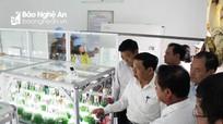 Quỳnh Lưu thu hút 300 tỷ đồng đầu tư phát triển công nghiệp