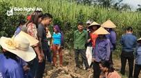 Chính sách dân tộc: Chưa có sinh kế thoát nghèo bền vững