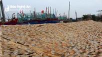 Ngư dân Nghệ An chế biến hải sản khô cho thị trường Tết