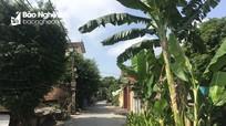 Bất cập trong quản lý tuyến đê Tả Lam đoạn qua huyện Đô Lương