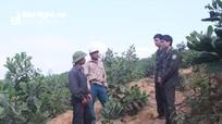 Giúp dân chuyển đổi mục đích sử dụng đất lâm nghiệp: Việc làm hay từ huyện núi Quỳ Châu