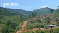 Cận cảnh cung đường gỗ lậu ở sát biên giới Tây Nghệ An